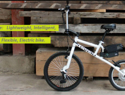 Lifebike, electric and original