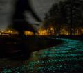 Route lumineuse la nuit pour velo