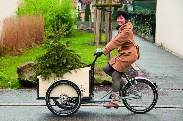 Transport sapin Noel a velo cargo