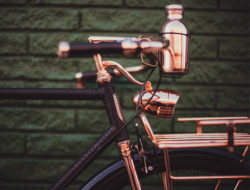 Velo en cuivre Williamson Wheelmen