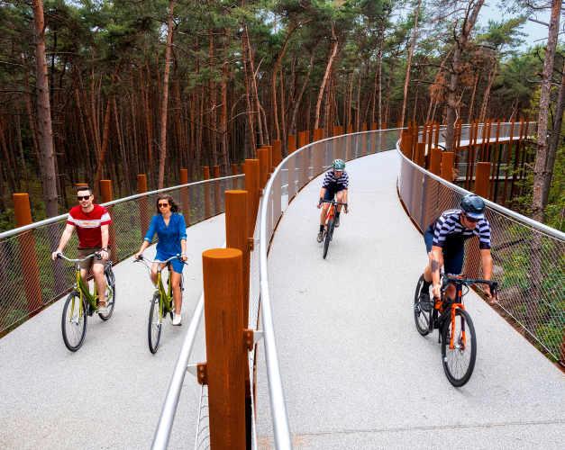 Experience cycliste